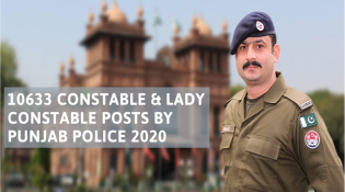 Constable and Lady Constable Posts By Punjab Police